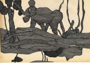 gal elefant løs